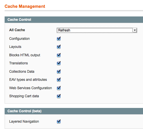 Tick all the boxes and refresh the Magento cache.